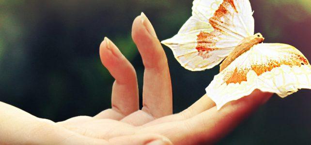 mariposa-terapia-circulos-essen